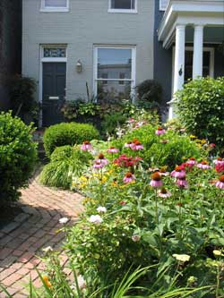 Garden In Federal Hill Neighborhood of Baltimore